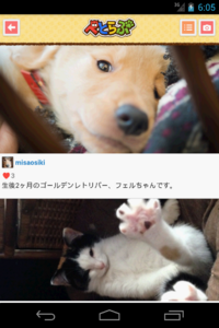 _device-2014-03-10-150550-dog.png